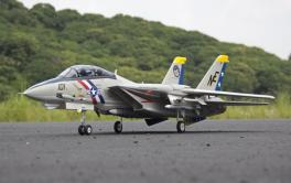 Freewing F-14 Tomcat Twin 80mm Metal EDF Jet - PNP PLUS